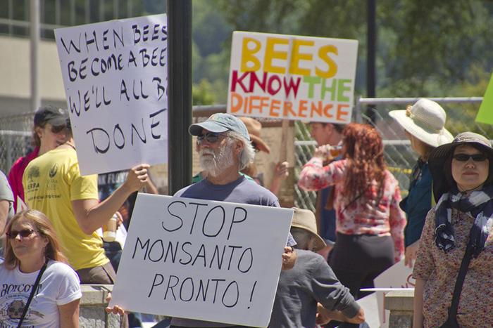GMOs and Endo – Just Say NO!